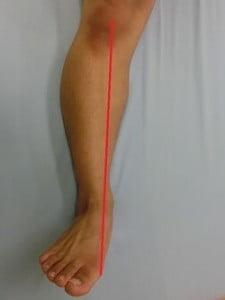 下腿軸(外旋)